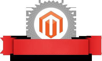 Certified Magento Developer